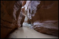 Muddy waters of the Paria River in Paria Canyon. Vermilion Cliffs National Monument, Arizona, USA ( color)