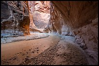 Craked mud along the Paria River in canyon. Vermilion Cliffs National Monument, Arizona, USA ( )