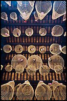 Incense coils seen from below, Thien Hau Pagoda, district 5. Cholon, District 5, Ho Chi Minh City, Vietnam (color)