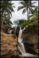Waterfall flowing under palm trees, Fairy Stream. Mui Ne, Vietnam (color)