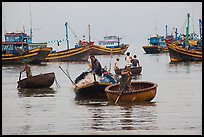 Men use round woven boats to disembark from fishing boats. Mui Ne, Vietnam ( color)