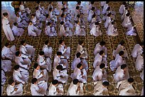 Worshippers dressed in white pray in neat rows in Cao Dai temple. Tay Ninh, Vietnam (color)
