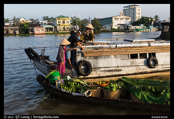 People buying fruit on boats, Cai Rang floating market. Can Tho, Vietnam