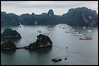 White tour boats and limestone islands covered in tropical vegetation. Halong Bay, Vietnam (color)