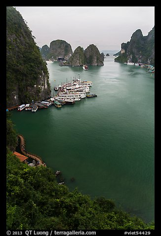 View over bay and boats from Surprise Cave exit. Halong Bay, Vietnam
