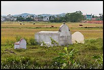 Tombs set amongst field. Vietnam (color)