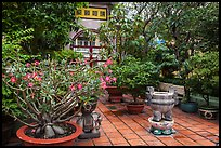 Tran Hung Dao temple gardens. Ho Chi Minh City, Vietnam ( color)