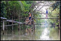 Villagers crossing monkey bridge. Can Tho, Vietnam ( color)