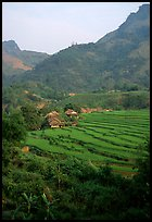 Minority village and rice terraces, near Mai Chau. Northwest Vietnam (color)