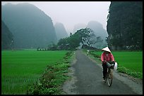 Bicyclist on a dry levee. Ninh Binh,  Vietnam (color)