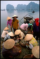 Women gathering around fresh fish catch. Halong Bay, Vietnam (color)