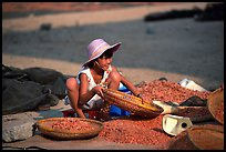 Girl sorting dried shrimp. Ha Tien, Vietnam (color)
